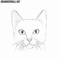 Cat Drawing Images How To Draw A Cat Head Drawingforall Net