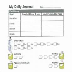 Free Daily Diary Template Free 15 Sample Daily Log Templates In Pdf Ms Word