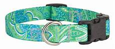Country Brook Design Dog Collars 10 Country Brook Design 174 Deluxe Dog Collars Paisley