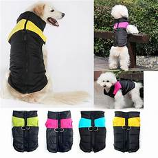 small coats for large small jackets pet clothes waterproof puppy