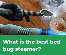 top 5 best bed bug steamers 2019 review pestions