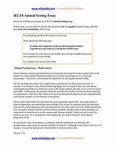 Animal Testing Essays Anti Animal Testing Essay 50 Animal Testing Essay