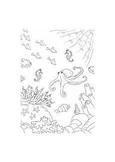 Ausmalbilder Zum Ausdrucken Unterwasserwelt Ausmalbilder F 252 R Kinder Mit Unterwasser Szenen