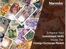 Pin by Narnolia Securities Limited on Investing and