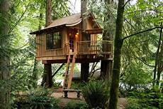 top 15 best tree house hotels in the world