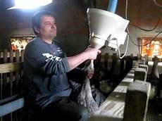 Gavage Feeding Foie Gras The Gavage Force Feeding Of A Goose Youtube