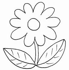 Blumen Malvorlagen Kostenlos Zum Ausdrucken Chip Ausmalbilder Blumen Basteln