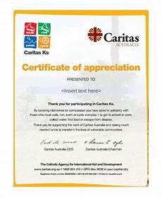 Certificate Of Appreciation Examples 37 Certificate Of Appreciation Templates Pdf Docs