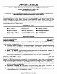 Project Manager Resume Objectives Professional Senior Project Manager Resume Objective