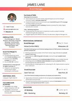 Examples Of Resume Layouts Best Resume Layout 2020 Guide With 50 Examples And Samples