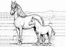 Malvorlage Pferd Zum Ausdrucken Ausmalbilder Pferde 1 Ausmalbilder