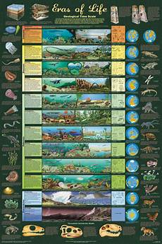 Fossil Record Chart Foundations Creation Club The Fossil Record The Greatest