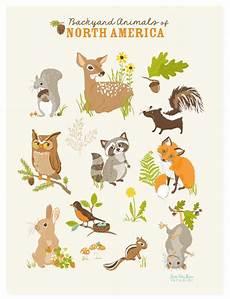 woodland animal wall animals of america
