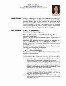 Example Professional Summary Example Resume Professional Summary Free Resume Templates