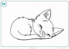 dibujos de gatos dibujos de gatos para imprimir y colorear mundo primaria