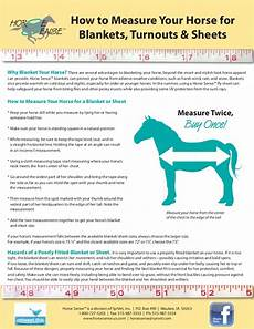 European Horse Blanket Size Chart How To Measure Your Horse For A Blanket