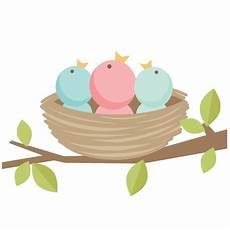 baby birds svg scrapbook cut file clipart files for