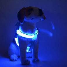 Dog Led Light Led Dog Harnesscanine Care Products