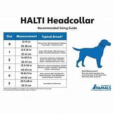 Holt Head Collar Size Chart Halti Dog Head Collar Black Size 1 Portobello Pets