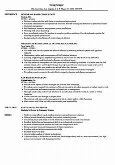 Sap Consultant Resume Sap Basis Consultant Resume Samples Velvet Jobs
