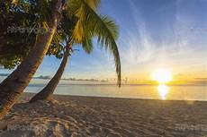 strand solnedgang fototapet tropisk plakater lerretstrykk solnedgang