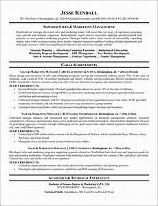 The Best Resume Sample 9 Career Development Plan Template Doc Sampletemplatess