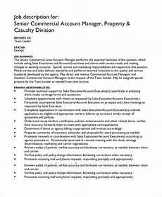 Account Manager Job Description Sample Sample Account Manager Job Description 7 Examples In Pdf