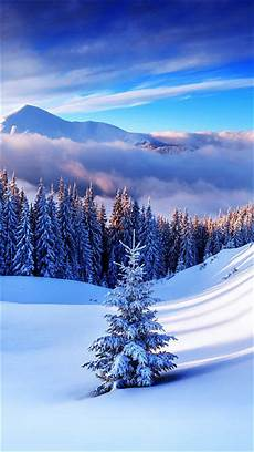 winter wallpaper iphone plus winter mountain tree iphone 6s plus wallpaper gallery