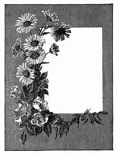 gray flower frame png photos free transparent