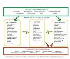 Bio Chart Is Chiropractic Care Right For You Fully Alive Chiropractic
