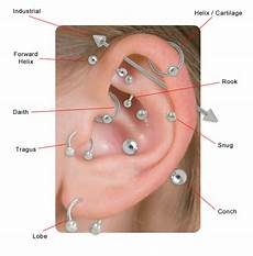 Daith Piercing Chart Ip Treble Clef Music Note Tragus And Cartilage Piercing