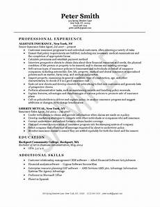 Insurance Agent Resumes Insurance Agent Resume Example