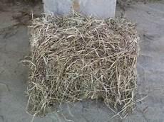 Fescue Hay White House Farms Fescue Free Horse Hay