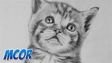 dibujos de gatos dibujando a un gato bebe realista