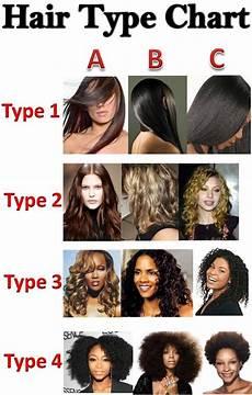 Hair Number Chart Sheabutterlicious Hair Charts