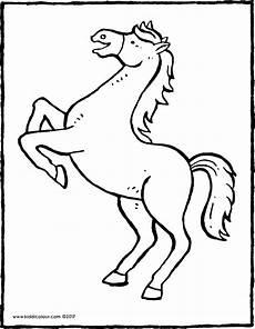 ein steigendes pferd kiddimalseite