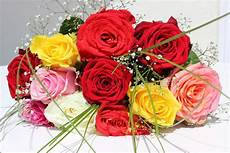 Flower Decoration Ke Wallpaper by Top 5 Flowers To Give As Birthday Gifts Colliers News