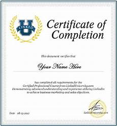 Certificate Of Successful Completion 13 Certificate Of Completion Templates Excel Pdf Formats