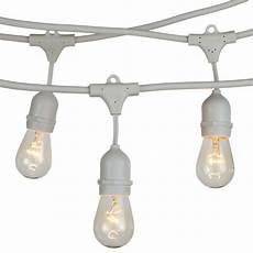 Brightech Lights Brightech Ambience Pro 15 Light 48 Ft Globe String Lights