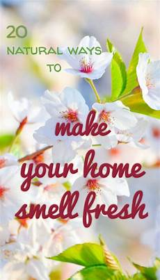 Fresh Home 20 Ways To Make Your Home Smell Fresh Nature
