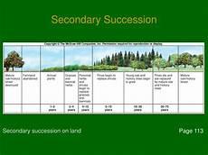 Secondary Succession Ppt Unit 4 Chapter 6 Part 1 Powerpoint Presentation