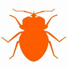 about bed bugs quality green pest