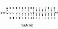 Palmitic Acid Carbohydrates And Lipids Scroll Down Nya General Biology 1