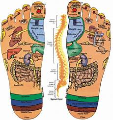 Foot Chart My Own Thoughts Acupressure Reflexology Charts Collection