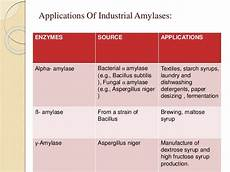 amylase production
