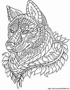 Bilder Zum Ausmalen Wolf Ausmalbild Du Denkst Ich Bin Der Wolf Kostenlose