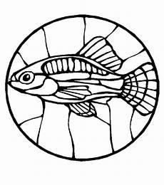 Malvorlagen Fische Quest Fische 00238 Gratis Malvorlage In Fische Tiere Ausmalen