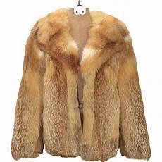 coats transparent the winter coat png image purepng free