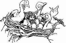 in a bird s nest clip at clker vector clip