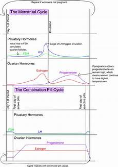 Birth Control Pill Hormone Chart Ready Set Chart Hormones Disrupted The Biology Behind